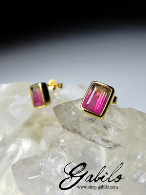 Polychrome Tourmaline Gold Earrings