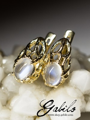 Moonstone gold earrings with gem report MSU
