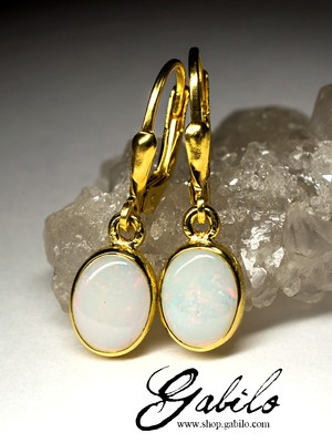Noble Opal Silver Earrings