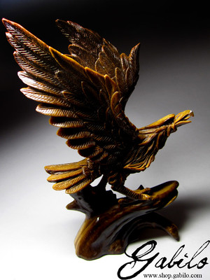 Eagle from the tiger's eye