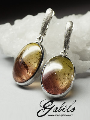 Bi-color Tourmaline Silver Earrings