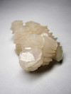 Crystal calcite shell
