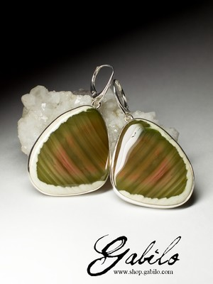 Silver Earrings with Jasper Imperial