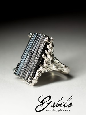 Silver Ring with a Sherl